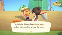 Animal Crossing Screen Shot 3-23-20, 1.03 PM.png