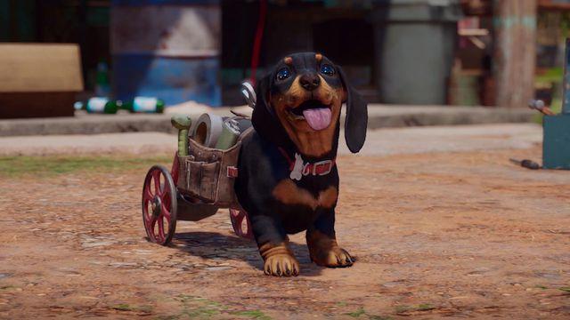 Chorizo the wiener dog from Far Cry 6